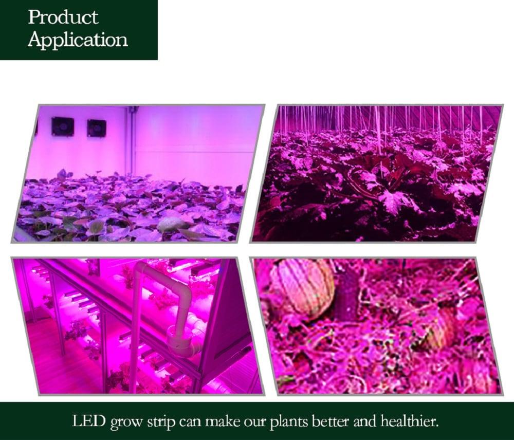 5M LED vízálló teljes spektrum növekvő csík fény 300 LED 5050 hidroponikus-többszörös