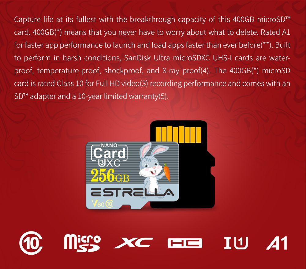 ESTRELLA V60 High Speed High Capacity Micro SD Card- Slate Gray 128GB - Rabbit Pattern